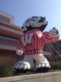 Outside of the union, Bucky Badger.