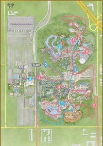 Disneyland 10K route is in pink, most of it is in the park.