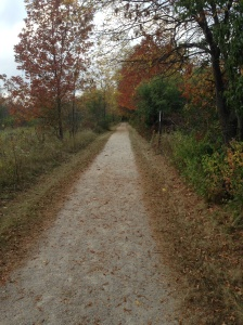 Love this path, pretty fall day