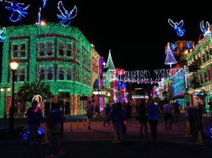 Osborne Family Lights, so so pretty to run through.